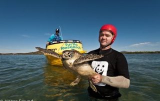 "Charles Stevens of WWF-Australia catches a green turtle as part of ""turtle rodeo"" research activity in Bowen QLD with JCU volunteer Ron Goodwin expertly assisting with the boat chase."