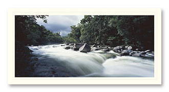 Mossman Gorge foto card