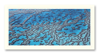 Great Barrier Reef foto card
