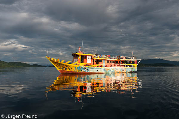 Gurano Bintang (whale shark) WWF Indonesia's education boat.