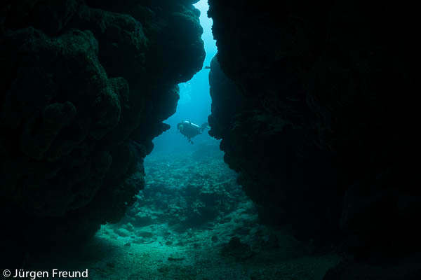 Coral Reef in the Great Sea Reefs with diver silhouetted against a coral cave.