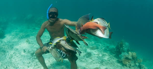 Spear fisherman hunting reef fish in none marine protected areas of the Great Sea Reefs.