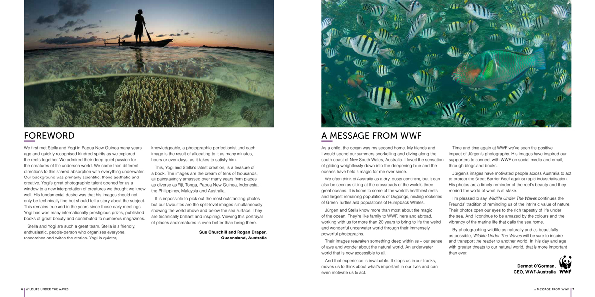 Wildlife Under the Waves-Foreword and WWF Message